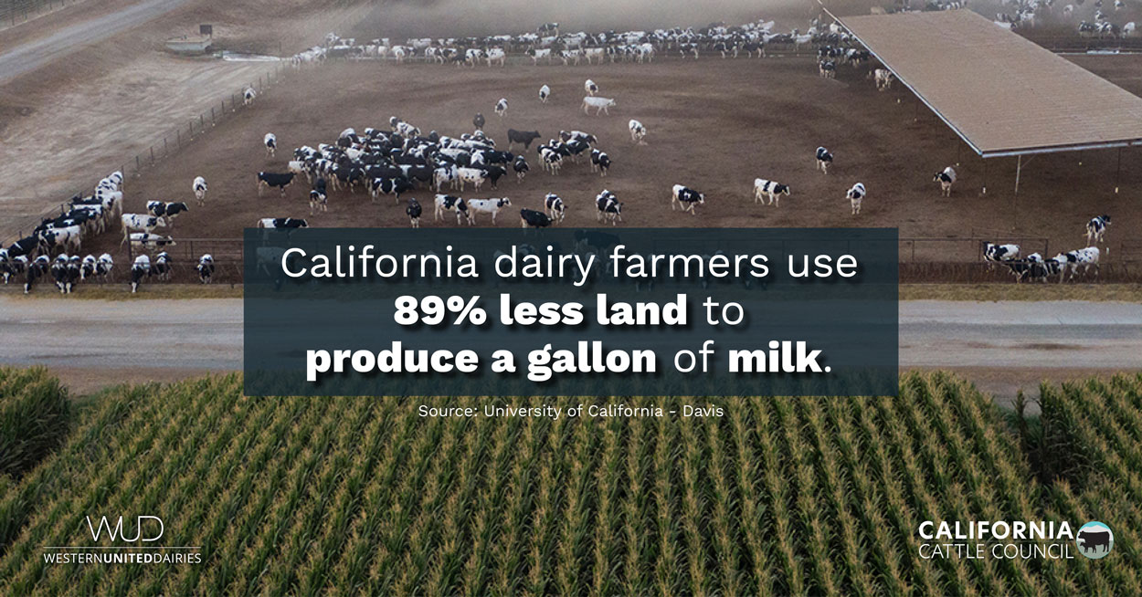 California Cattle Council Launches Campaign Focusing on Drought