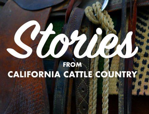 New Podcast Episode: Dorrance Ranch
