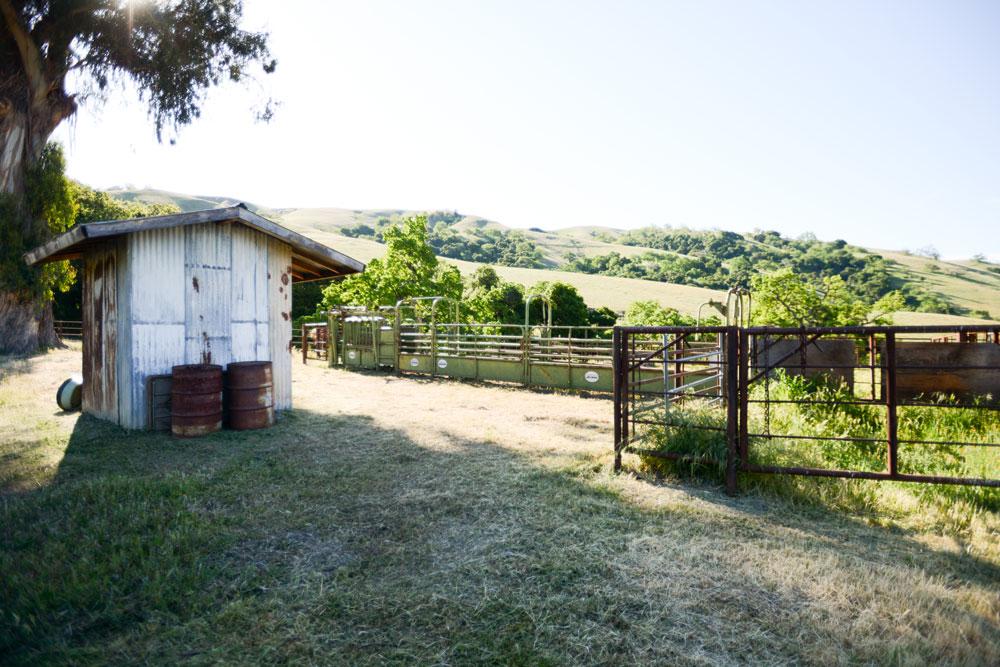 Spring at Dorrance Ranch